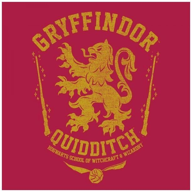Harry Potter: Gryffindor (Oil Washed) - Juniors T-Shirt (XS) image