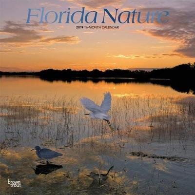 Florida Nature 2019 Square Foil by Inc Browntrout Publishers