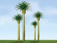JTT: H0 Scale Phoenix Palm - 3 Pack