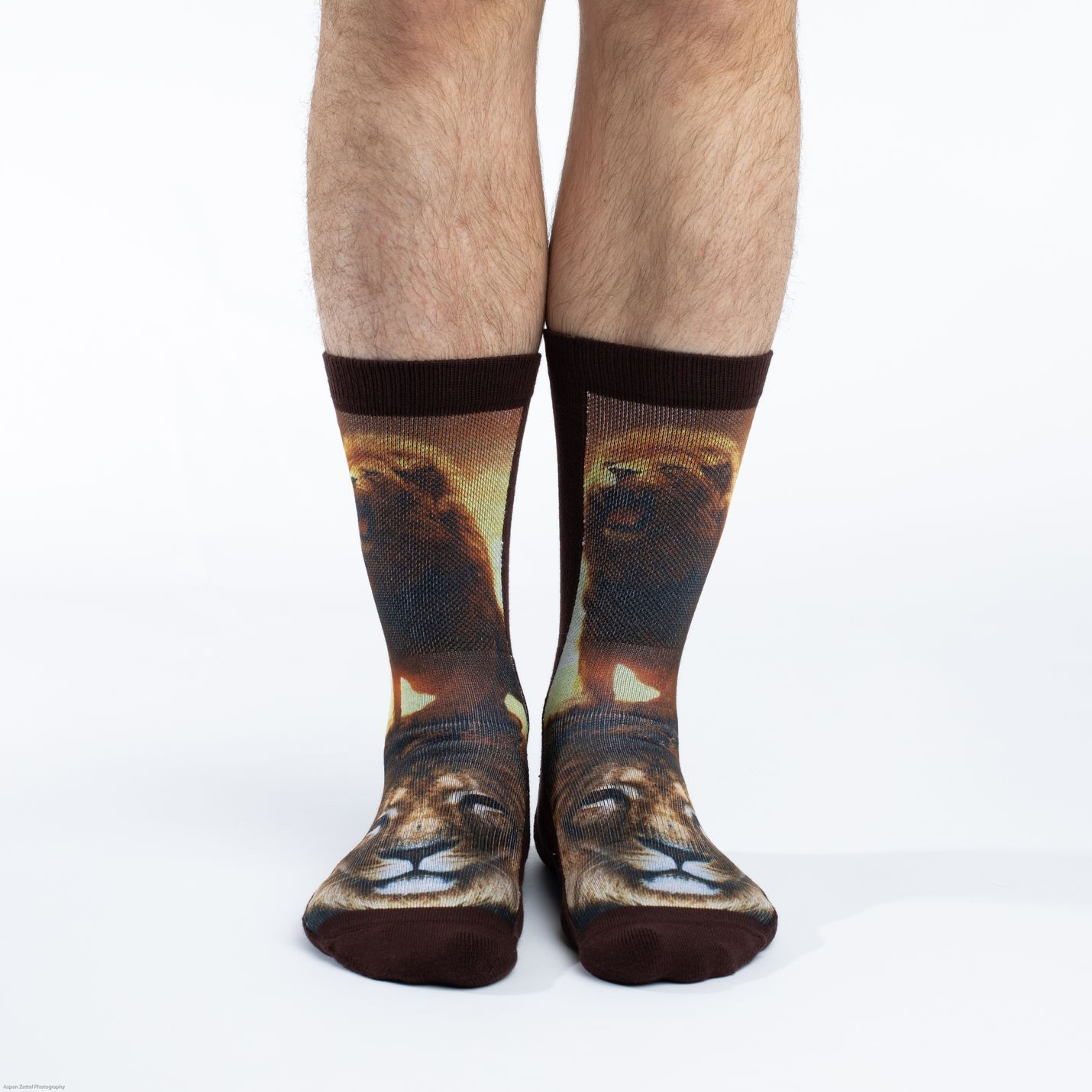 Men's Lion Socks - (Shoe Size 8-13) image