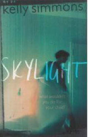 Skylight by Kelly Simmons image