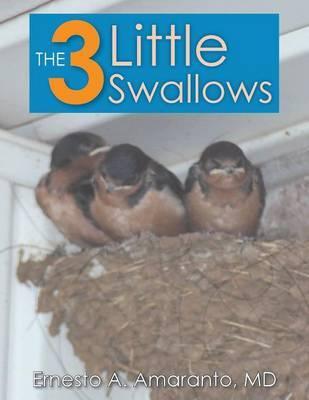 The 3 Little Swallows by Ernesto Amaranto