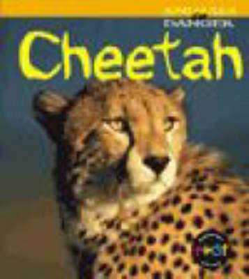 Cheetah by Rod Theodorou