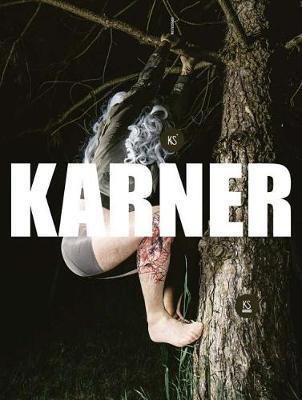 Karl Karner image