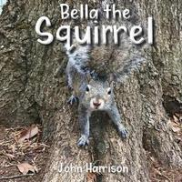 Bella the Squirrel by John Harrison