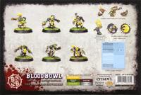 Blood Bowl: Scarcrag Snivellers image