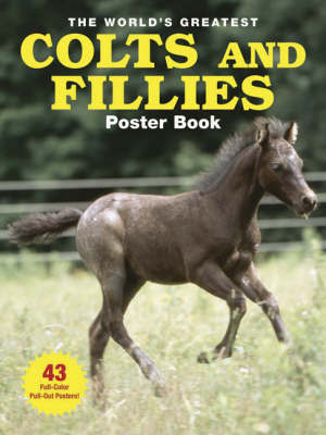The World's Greatest Colts and Fillies Poster Book by Daniel Johnson image