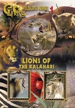 Go Africa - Wildlife Series: Vol. 1 - Lions Of The Kalahari on DVD