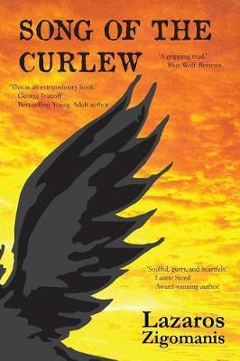 Song of the Curlew by Lazaros Zigomanis