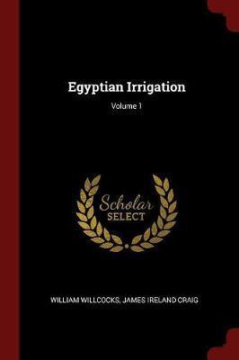 Egyptian Irrigation; Volume 1 by William Willcocks image
