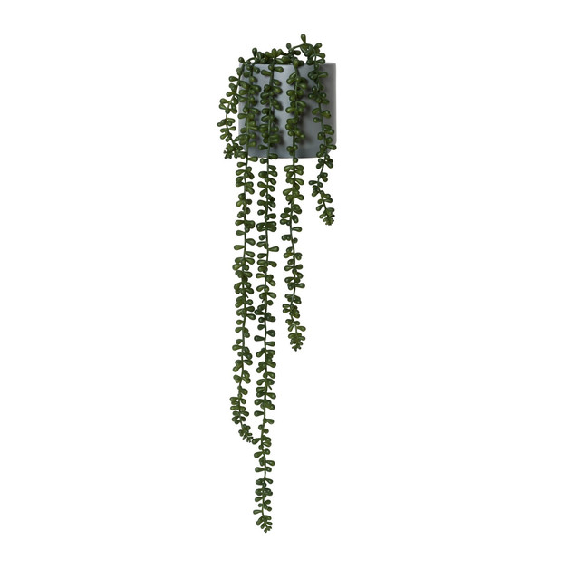 General Eclectic Artificial Plant - String of Pearls (Large - 75cm)