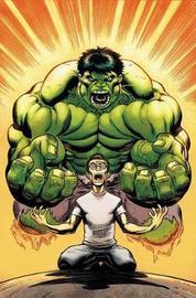 Hulk By Loeb & Mcguinness Omnibus by Jeph Loeb
