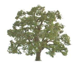 """JTT Scenic Live Oak Trees 3"""" (2pk) - H0 Scale image"""