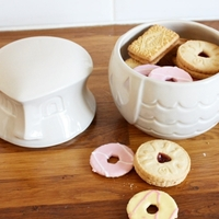 Bliss in the Woods Owl Biscuit Barrel