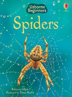 Spiders by Rebecca Gilpin