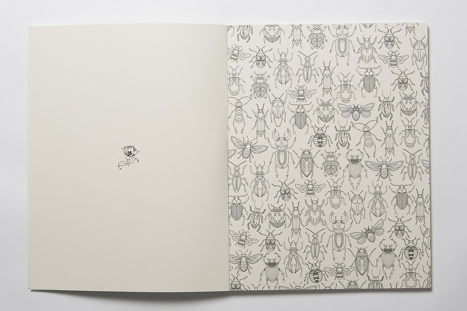 Secret Garden Artists Edition 20 Drawings To Colour And Frame By Johanna Basford