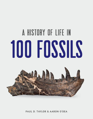 A History of Life in 100 Fossils by Paul D. Taylor