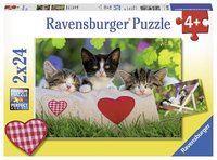 Ravensburger: Sleepy Kittens - 2x24pc Puzzle