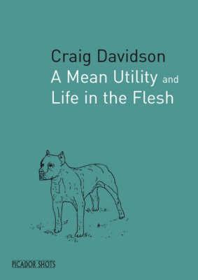 PICADOR SHOTS - 'A Mean Utility' by Craig Davidson