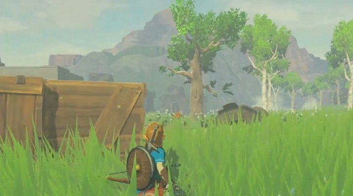 The Legend of Zelda Breath of the Wild for Nintendo Switch image