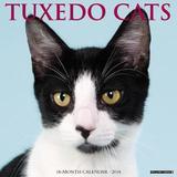 Just Tuxedo Cats 2018 Wall Calendar by Willow Creek Press