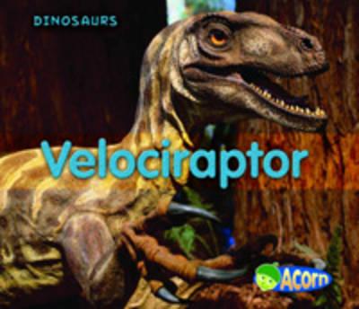 Velociraptor by Daniel Nunn