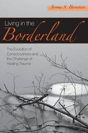 Living in the Borderland by Jerome S Bernstein image
