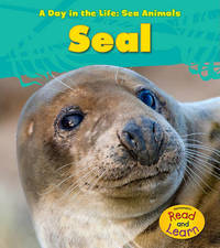 Seal by Louise A Spilsbury