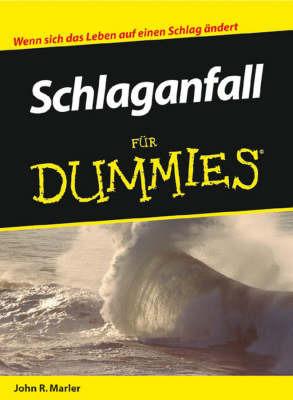 Schlaganfall Fur Dummies by John R Marler image