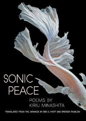 Sonic Peace by Kiriu Minashita