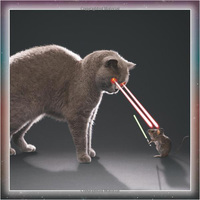 Cat Wars by Sellers Publishing image