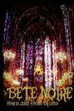 Bete Noire Issue #19 by Various Authors