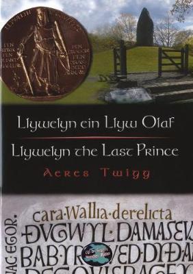 Llywelyn Ein Llyw Olaf by Aeres Twigg image