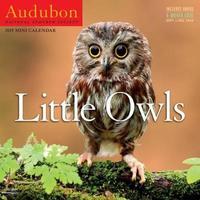 2019 Audubon Little Owls Mini National Audubon Society by Workman Publishing