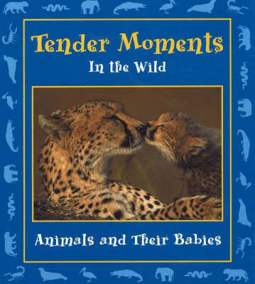 Tender Moments in the Wild: Animals and Their Babies by Stephanie Maze