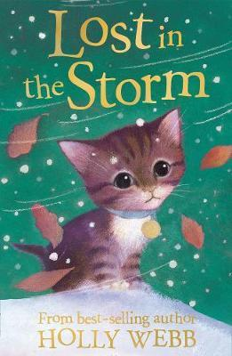 Lost in the Storm by Holly Webb image