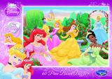 Disney Princess 60 Piece Jigsaw Puzzle - Rose Garden