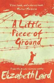 A Little Piece of Ground by Elizabeth Laird