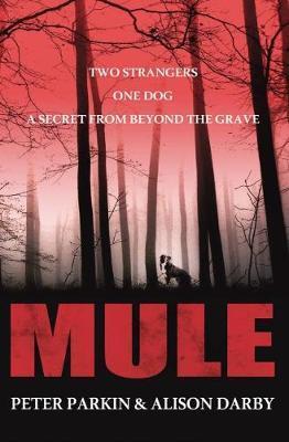 Mule by Peter Parkin