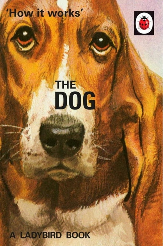 How it Works: The Dog by Jason Hazeley