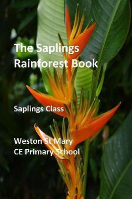 The Saplings Rainforest Book by Weston St Mary School (Saplings Class) image