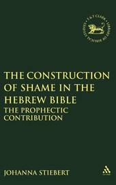 The Construction of Shame in the Hebrew Bible by Johanna Stiebert image