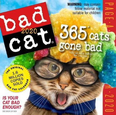 2020 Bad Cat Colour Page-A-Day Calendar by Workman Publishing