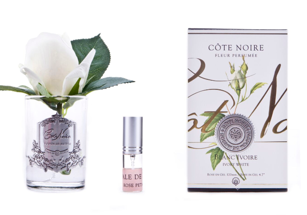 Cote Noire: Clear Rose Bud Ivory with Fragrance spray