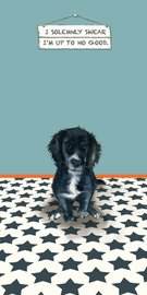 Little Dog Laughed: Solemnly - Greeting Card image