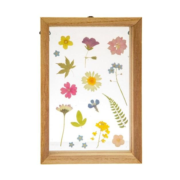 Sass & Belle: Floating Frame - Pressed Flowers