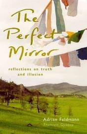 The Perfect Mirror: Reflections on Truth and Illusion by Adrian Feldmann image