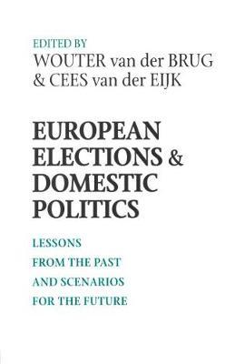 European Elections and Domestic Politics image