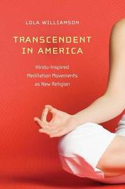 Transcendent in America by Lola Williamson image