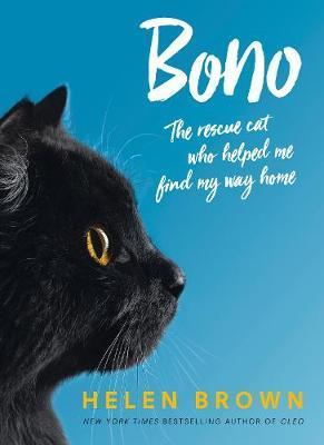 Bono by Helen Brown image
